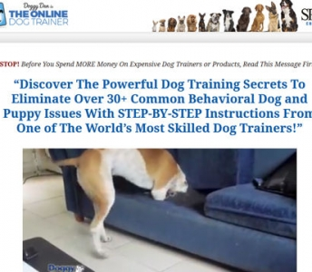 The Online Dog Trainer