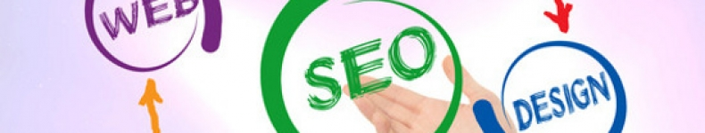 How A Professional Tampa SEO Company Works